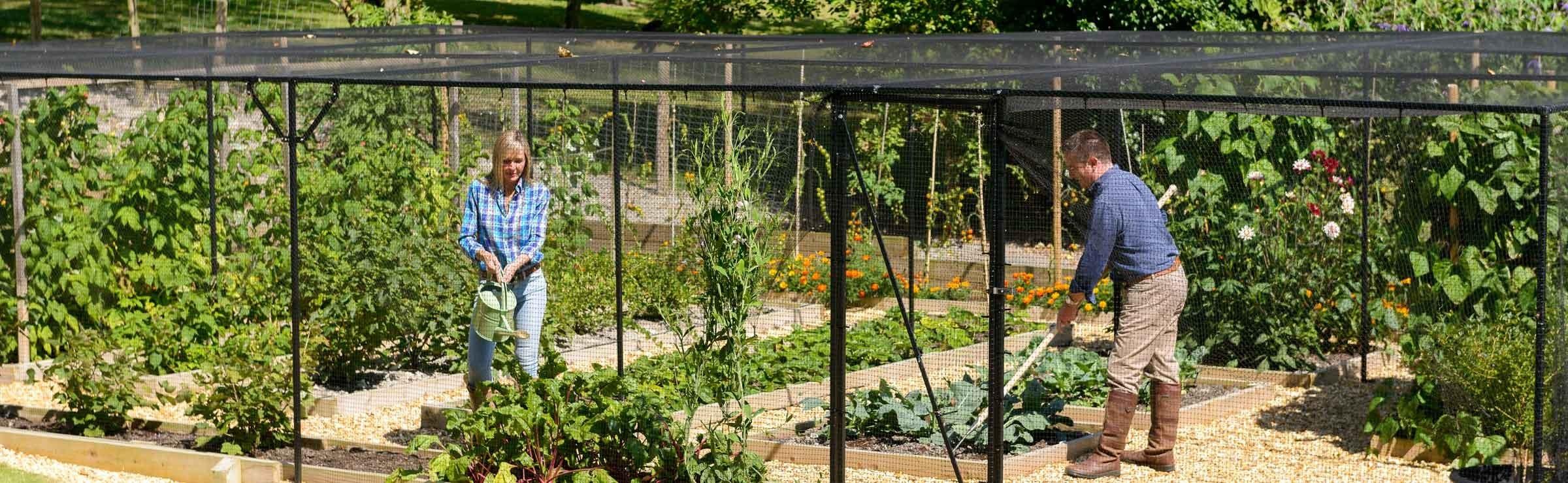 Fruit Cage - Harrod Horticultural