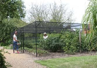 Walk In Fruit & Vegetable Cages