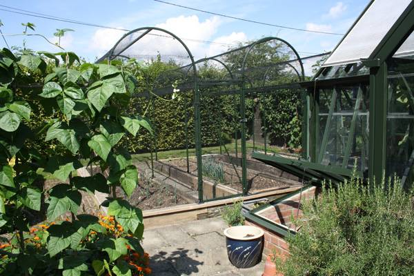Coloured Arch Fruit Cage 3