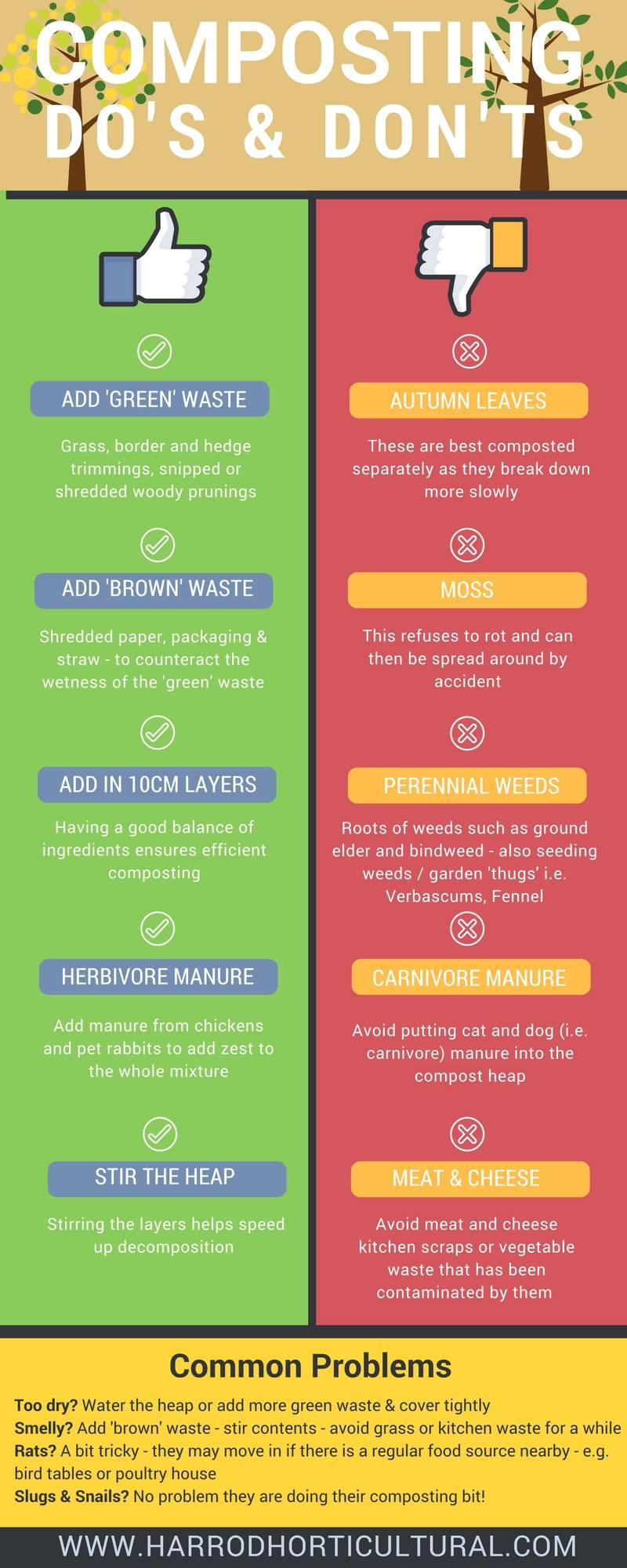Composting Infographic 2
