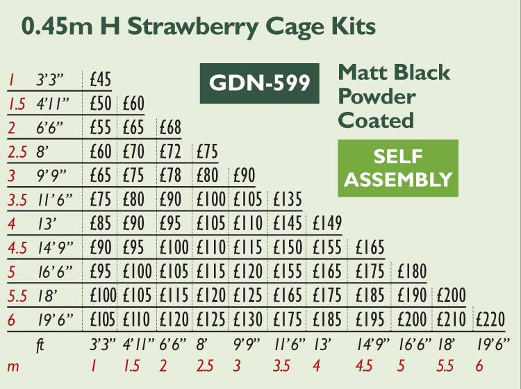 GDN-599 Strawberry Cage Price Grid 2017