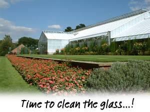 Wisley Glass
