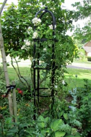 which obelisks are suitable for climbing roses. Black Bedroom Furniture Sets. Home Design Ideas