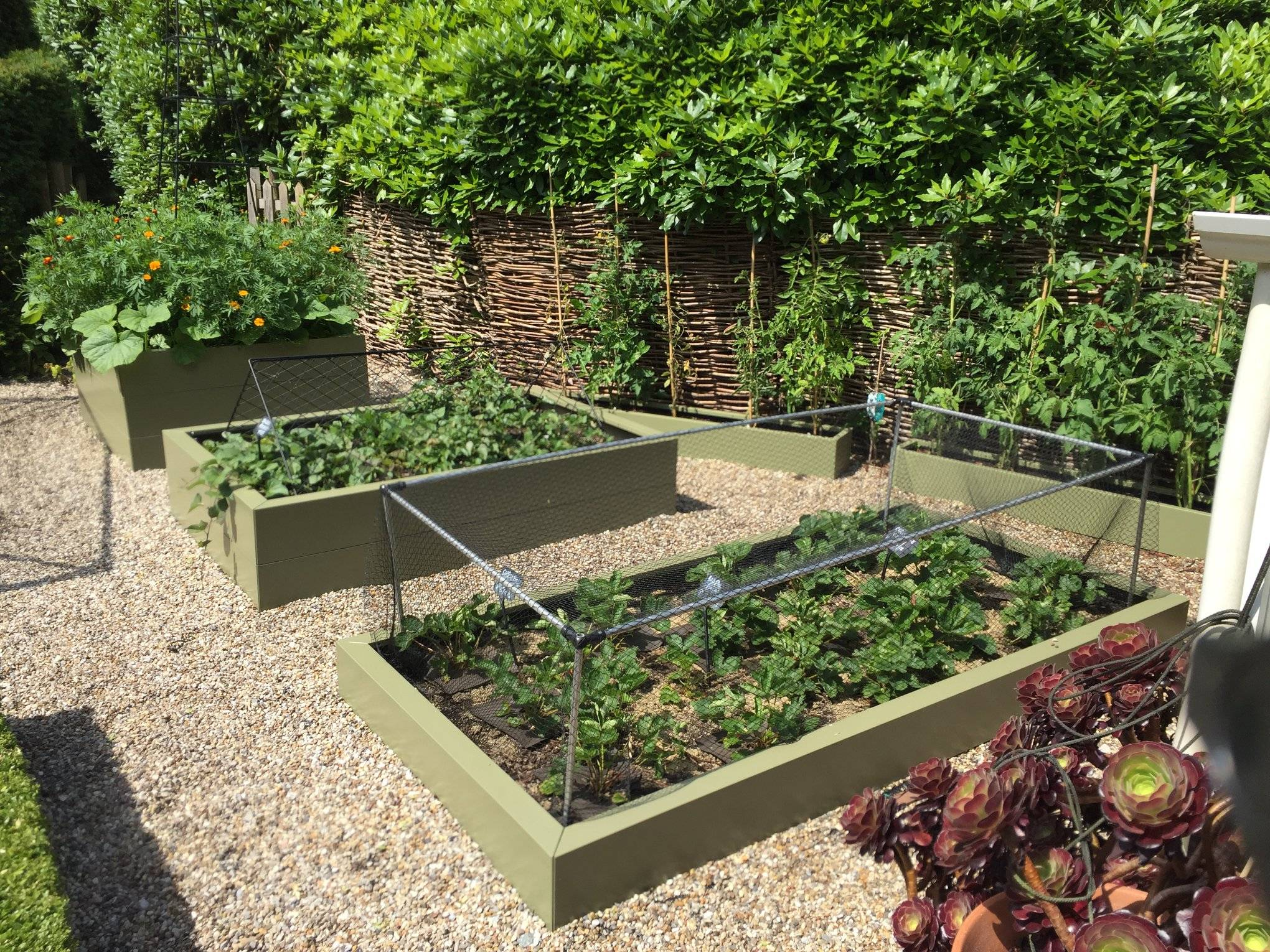 Kitchen-Garden-120719