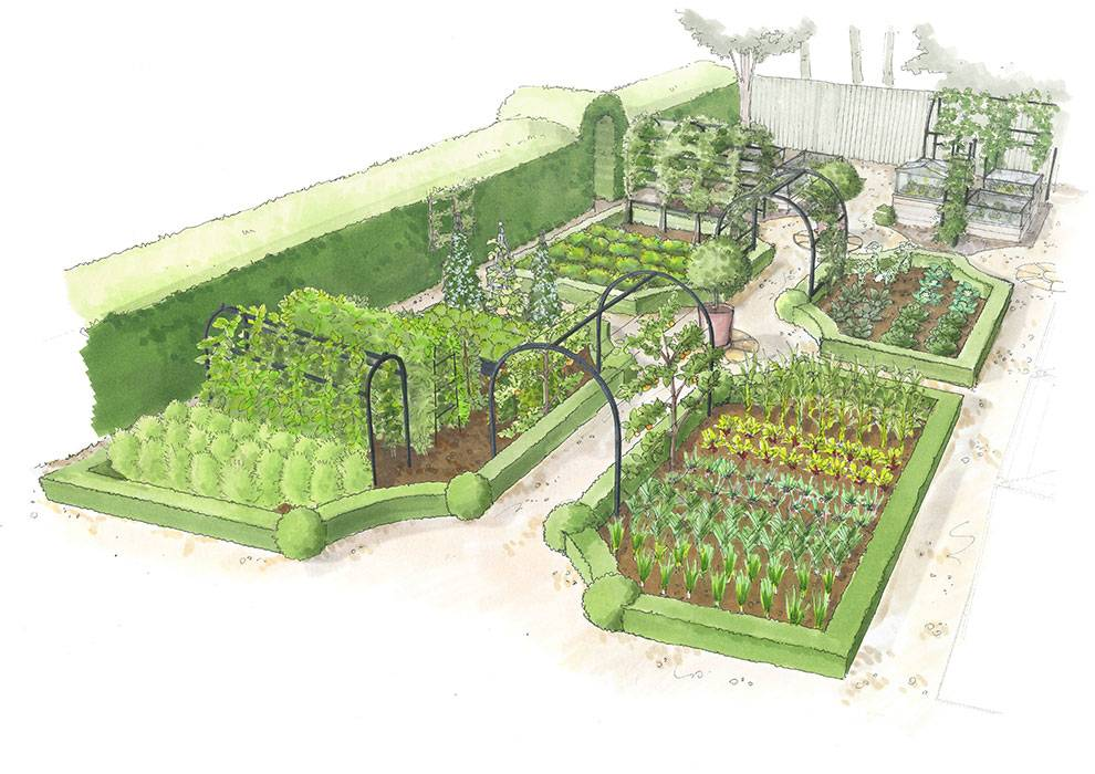 Kitchen Garden Front View illustration