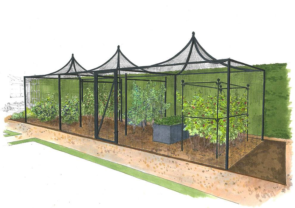 Kitchen Garden Peak Roof Cage Illustration