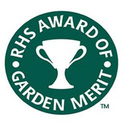 RHS Award of Merit Logo