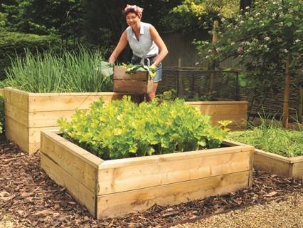 Raised Beds Content page