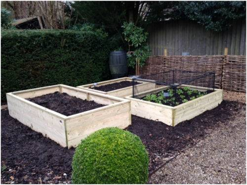 raised beds 210316