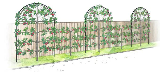 Roman Garden Screens with Gripple
