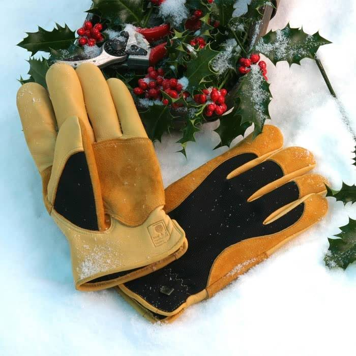 Winter Touch Gloves Blog