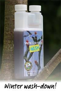 KG Jan 2012 Winter Wash