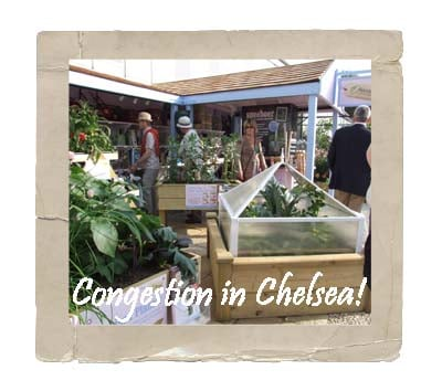 Chelsea Flower Show Stand 2010