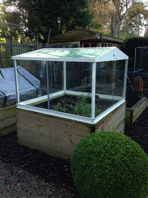 cold frame dec 14