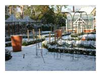Kitchen Garden Snow