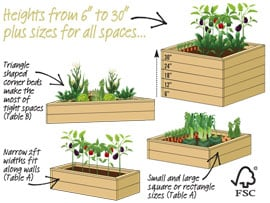 Standard Raised Beds Graphic