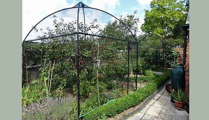 3m x 3m Dome Roof Steel Fruit Cage, Mr and Mrs Redpath - Middlesex