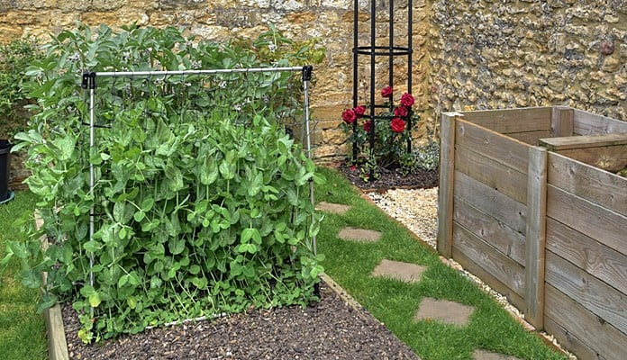 4ft Raised Bed Slot and Lock Pea Frame, Mr Hutson - Somerset