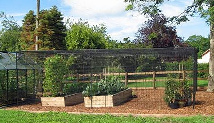 7m x 6m Bespoke Sloping Steel Fruit Cage with Deer Netting, Mrs Joyner - Gwent