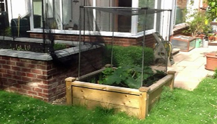 4ft x 4ft Superior Raised Bed, Mr Wright, Dorset