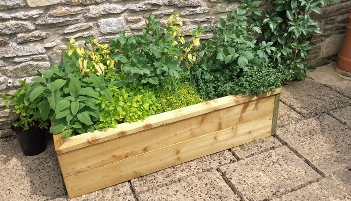 2ft x 4ft Standard Raised Bed, Mrs Warren - Wiltshire