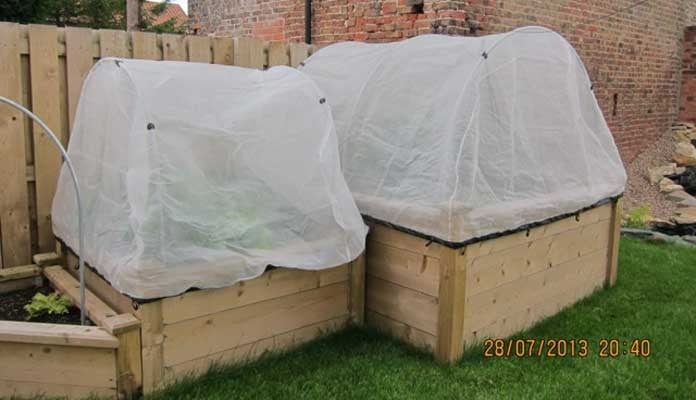 4ft x 4ft and 6ft x 6ft Superior Raised Beds, Mrs Barlow - Lincolnshire