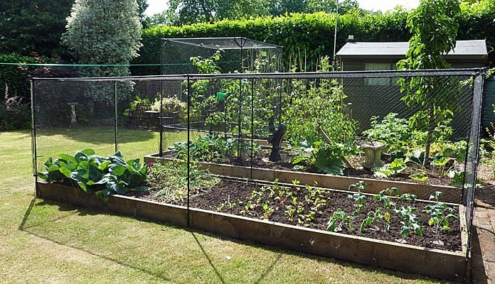 4.7 x 1.3m Bespoke Aluminium Vegetable Cage Kit, Mr Davies - Hampshire