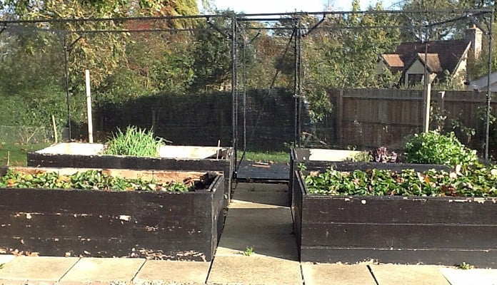 Fruit Cage Steel Sloped 3