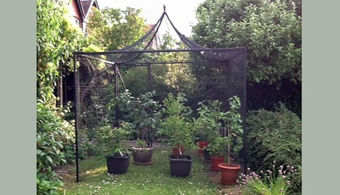 2.5m x 2.5m Peak Roof Steel Fruit Cage, Dr S - West Sussex