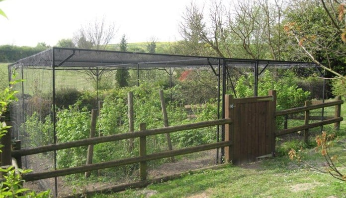 Bespoke Sloped Steel Fruit Cage