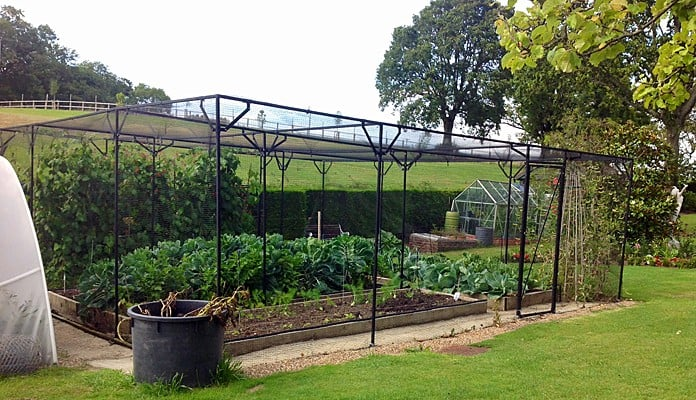 Fruit Cage Steel Sloped 4