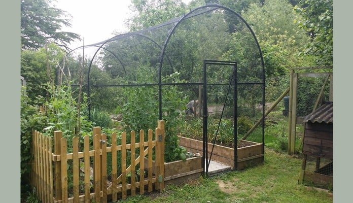 Fruit Cage Steel Roman Arch 2 After