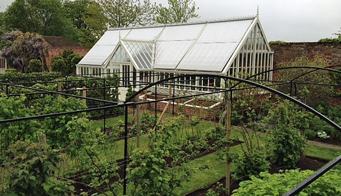 Curved Steel Fruit Cage 1