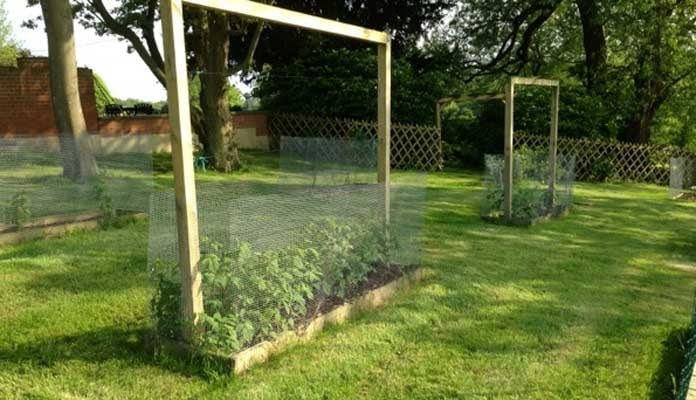 2ft x 8ft Standard Raised Beds, Mr B - Kent