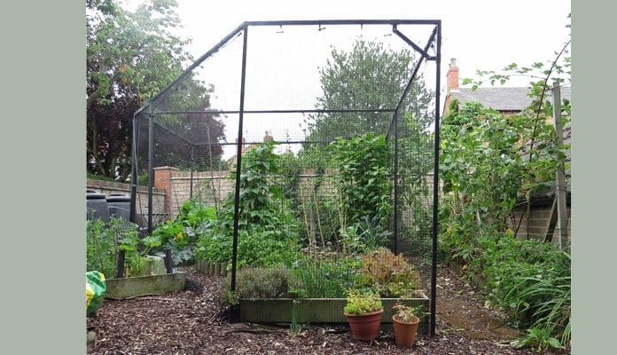 4.7m x 3.3m Bespoke Angled Steel Fruit Cage, Mrs Collings - Nottinghamshire