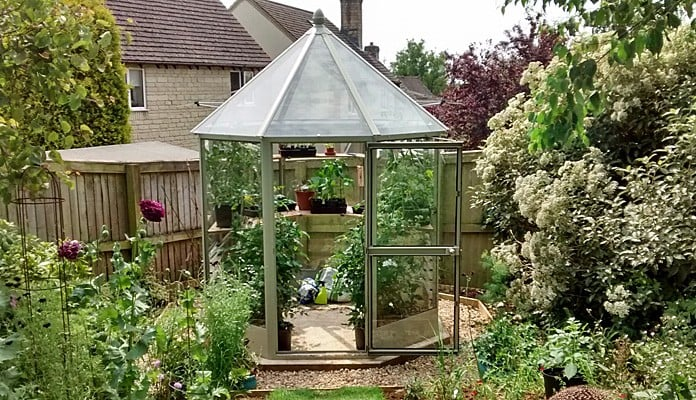 7ft x 7ft Willow Grey Elegance Glasshouse, Mrs Fern - Gloucestershire