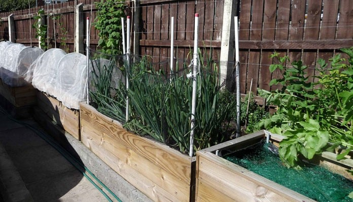 2ft x 6ft Allotment Raised Beds, Mr Ellis - Stockton-on-Tees