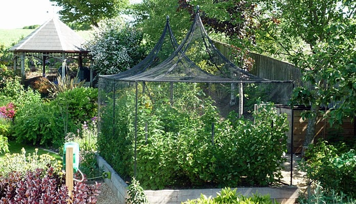 3m x 6m Peak Roof Steel Fruit Cage, Mr Spelman - Hampshire