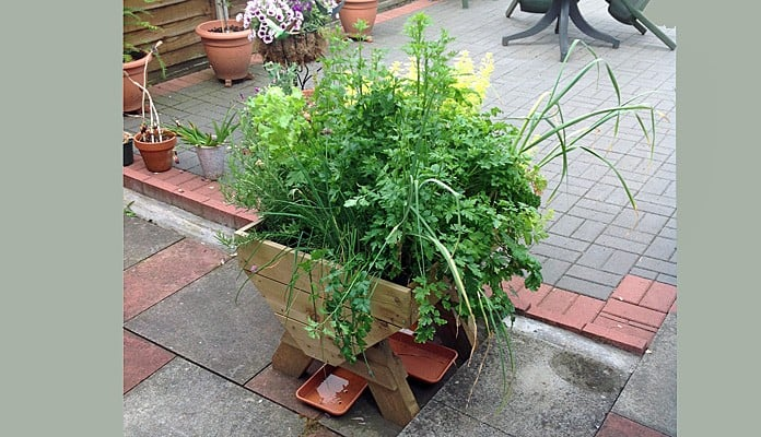 wooden planters northamptonshire with Manger Trough Planters Pgid1501 on Manger Trough Planters Pgid1501 in addition Shedstolast co furthermore Patio Containers further Micro And Mini Manger Planters Pgid1501 as well Stackable Vintage School Lab Stools.