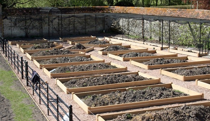 Raised Beds and Fruit Cage