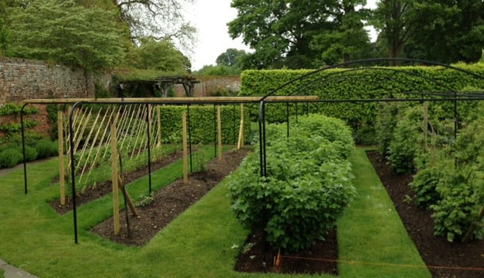 Curved Steel Fruit Cage 4