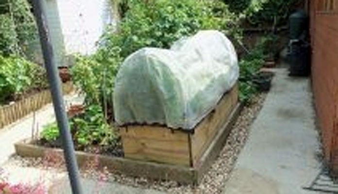 2ft x 6ft Allotment Raised Beds, Mrs Logan - Northamptonshire