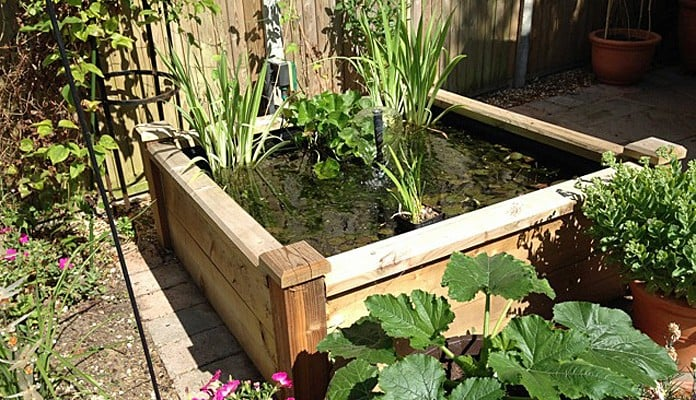 4ft x 4ft Raised Bed Pond, Mrs Templeton - Hampshire