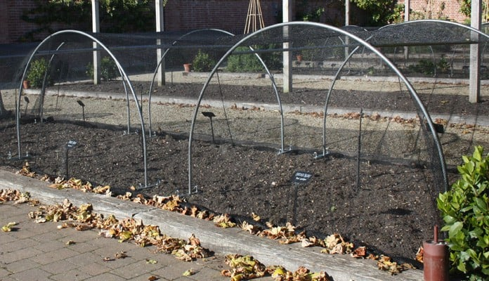 Steel Ground Anchors for Hoops, Chewton Glen Kitchen Garden