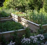 Raised Beds Superior