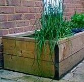 Raised Beds Standard