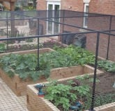 Fruit Cage Steel for Raised Beds