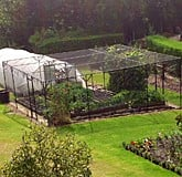 Fruit Cage Steel Sloped 2