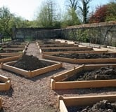 Walled Garden Oak Raised Beds