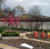 Walled Garden Fruit Cages